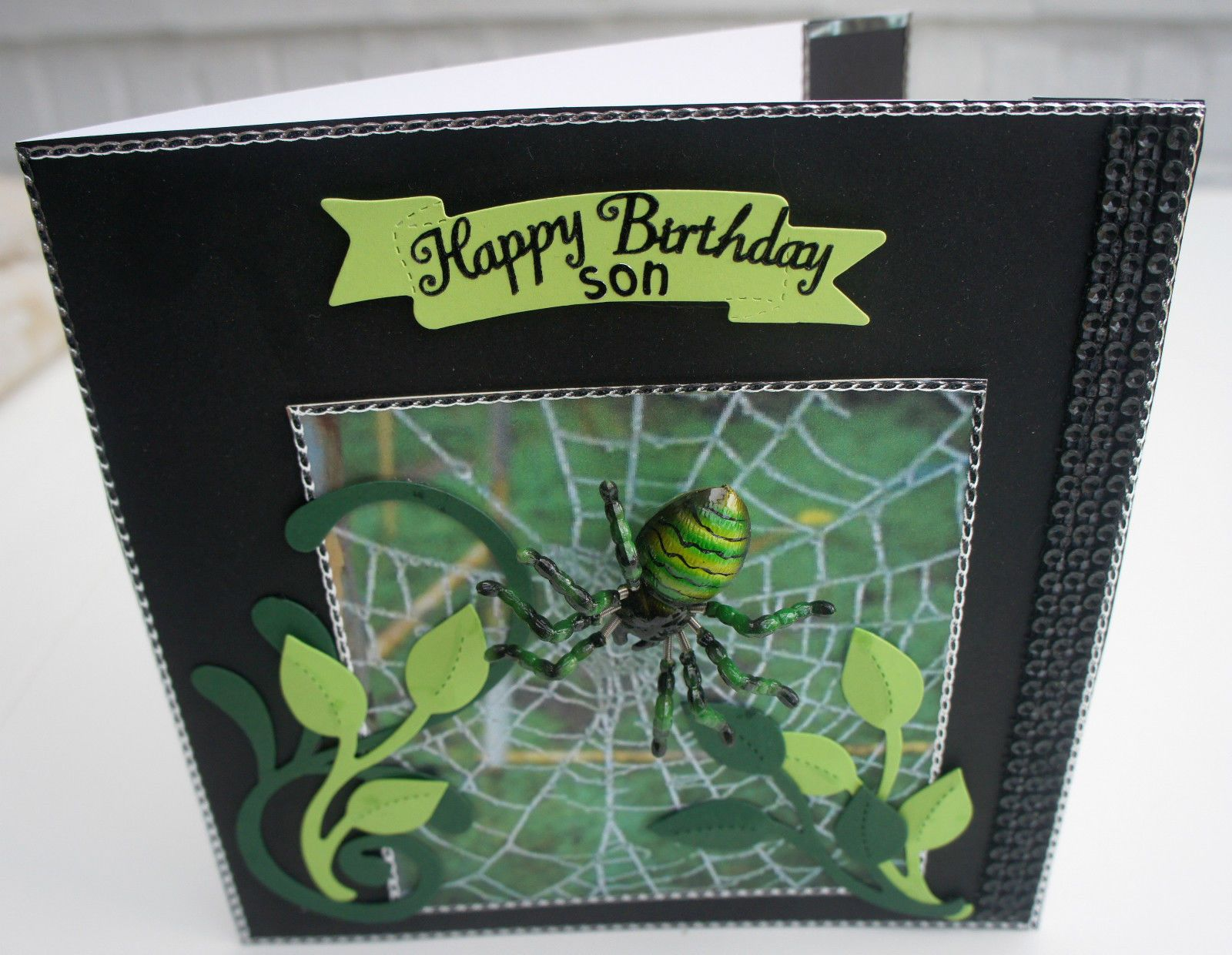 PERSONALISED SPIDER BIRTHDAY CARD BOXED WITH 3D MAGNETIC SPIDER
